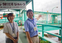ferry9